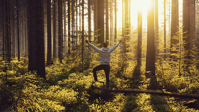 man standing in a forest with arms open during dawn 640x360