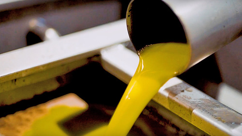 olive oil extraction equipment 640 x 360
