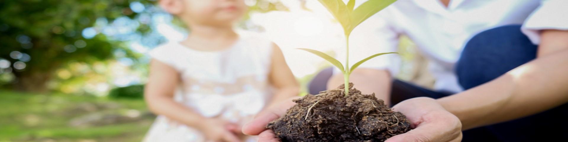 sustainable plant child 1920x480