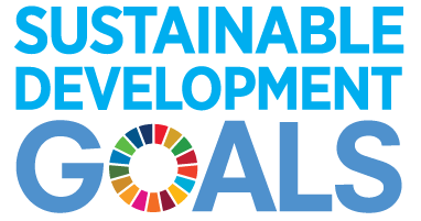 E SDG logo No UN Emblem square