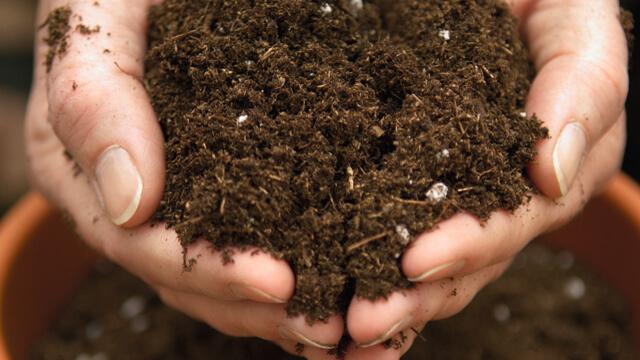 Fertilizers 640x360