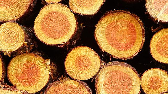 Cleantech-Resource-efficiency-tall-oil-final-210303.jpg
