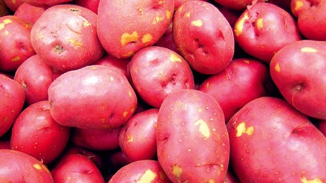 Potato processing 640x360