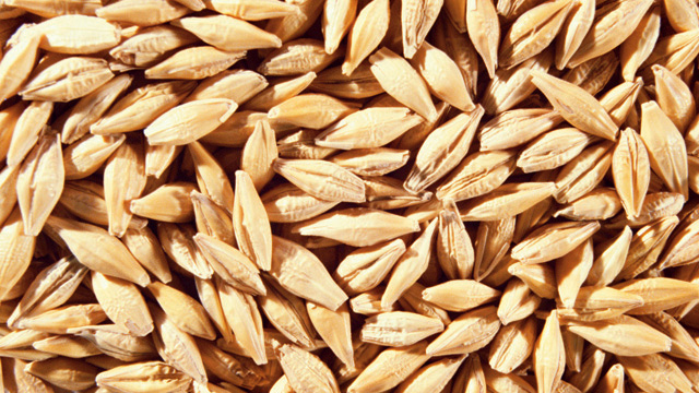 Wheat processing 640x360