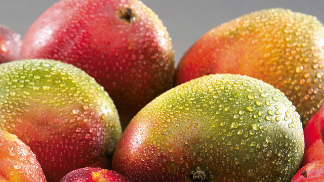 https://www.alfalaval.com/globalassets/images/industries/food-and-water/food-dairy-and-beverage/beverage/mango_640x360.jpg