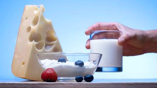 Dairy 640x360(2)