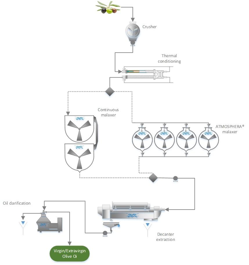 Processo estrazione olio d'oliva