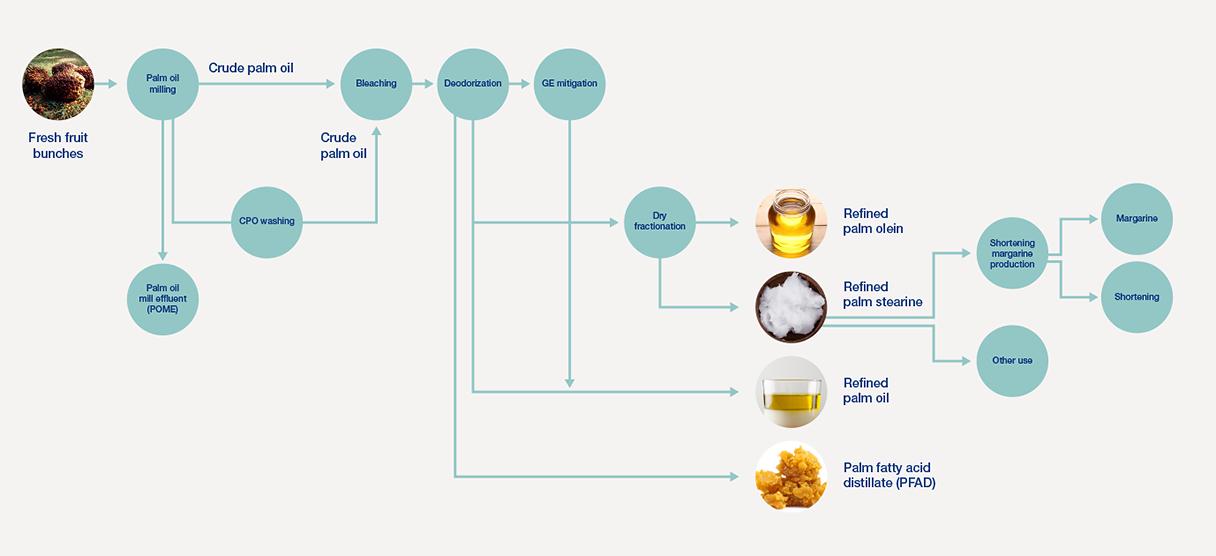 Palm Oil Refining 140121