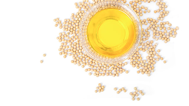 Seed oil processing