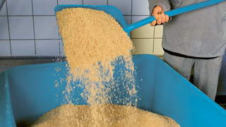 Fish meal processing_320x180.jpg