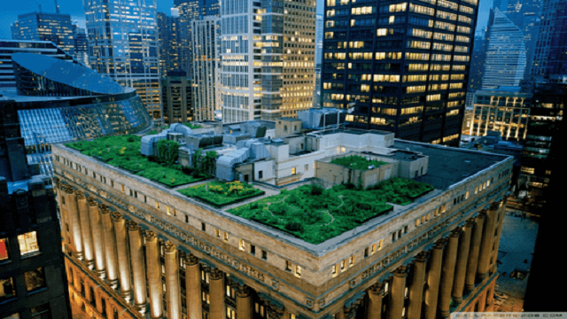 building roof garden wallpaper 640x360