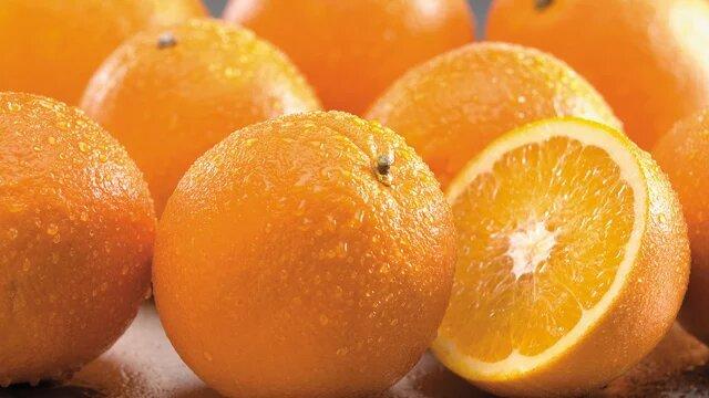 citrus 640x360