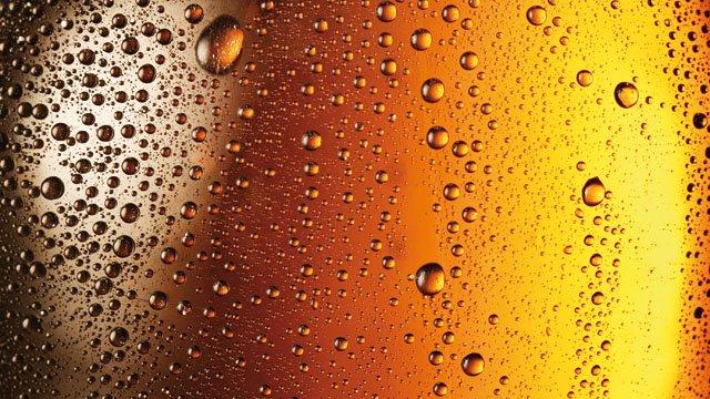 Producción de cerveza y sidra