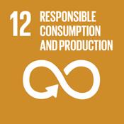 Objetivo 12 de desarrollo sostenible: Producción y Consumo Responsables
