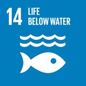 Objetivo 14 de Desarrollo Sostenible: Vida Submarina