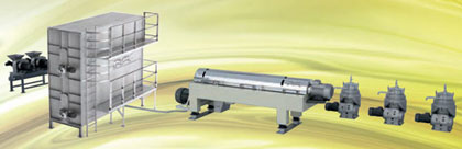 produccion-aceite-oliva-industrial.jpg