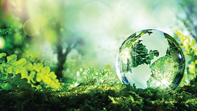 Environment 640 x 360