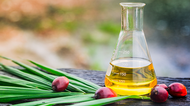Palm oil bottle 640x360