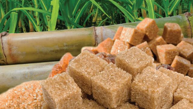 Sugar etanol plant Brazil case story 640x360