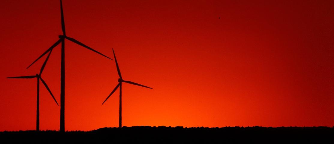 renewable-banner 3