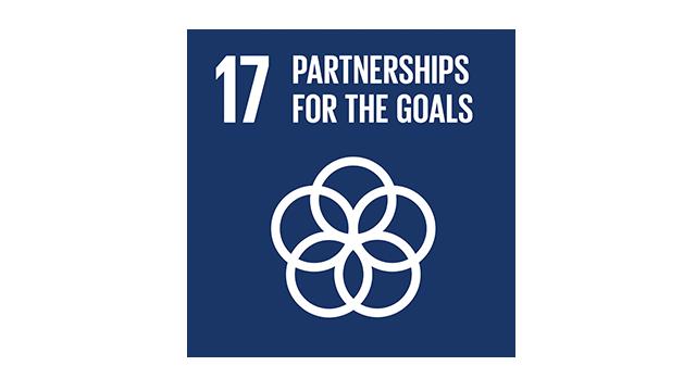 SDG 17 Vignette