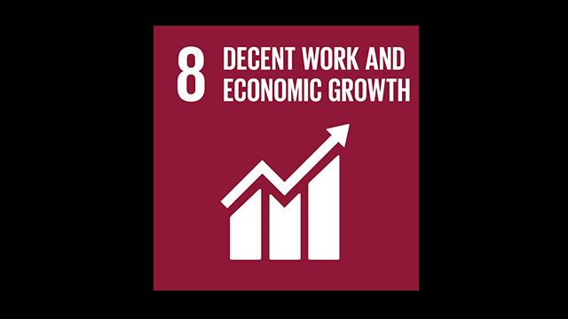 SDG 8 Vignette