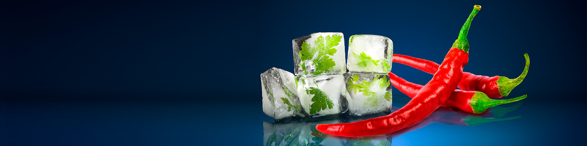 header ice chilli 1920x480