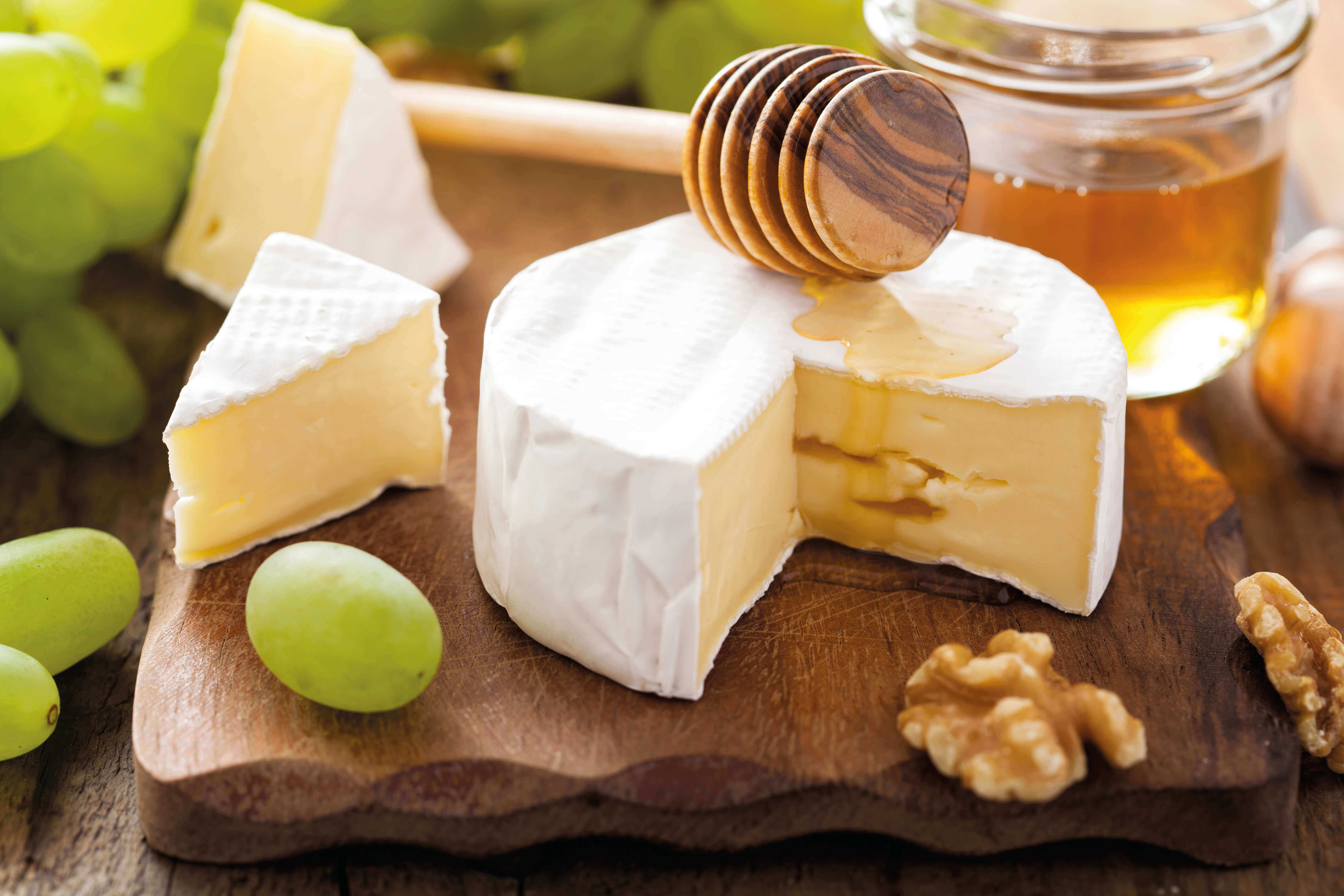 cheese with honey 640X360