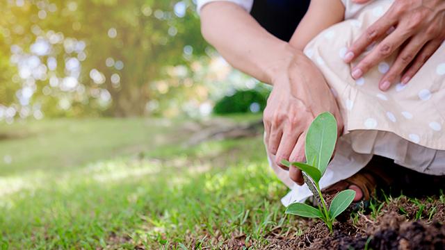 Sustainability intergenerational responsibility 640x360