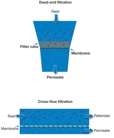 cross flow filtration vs dead end filtration