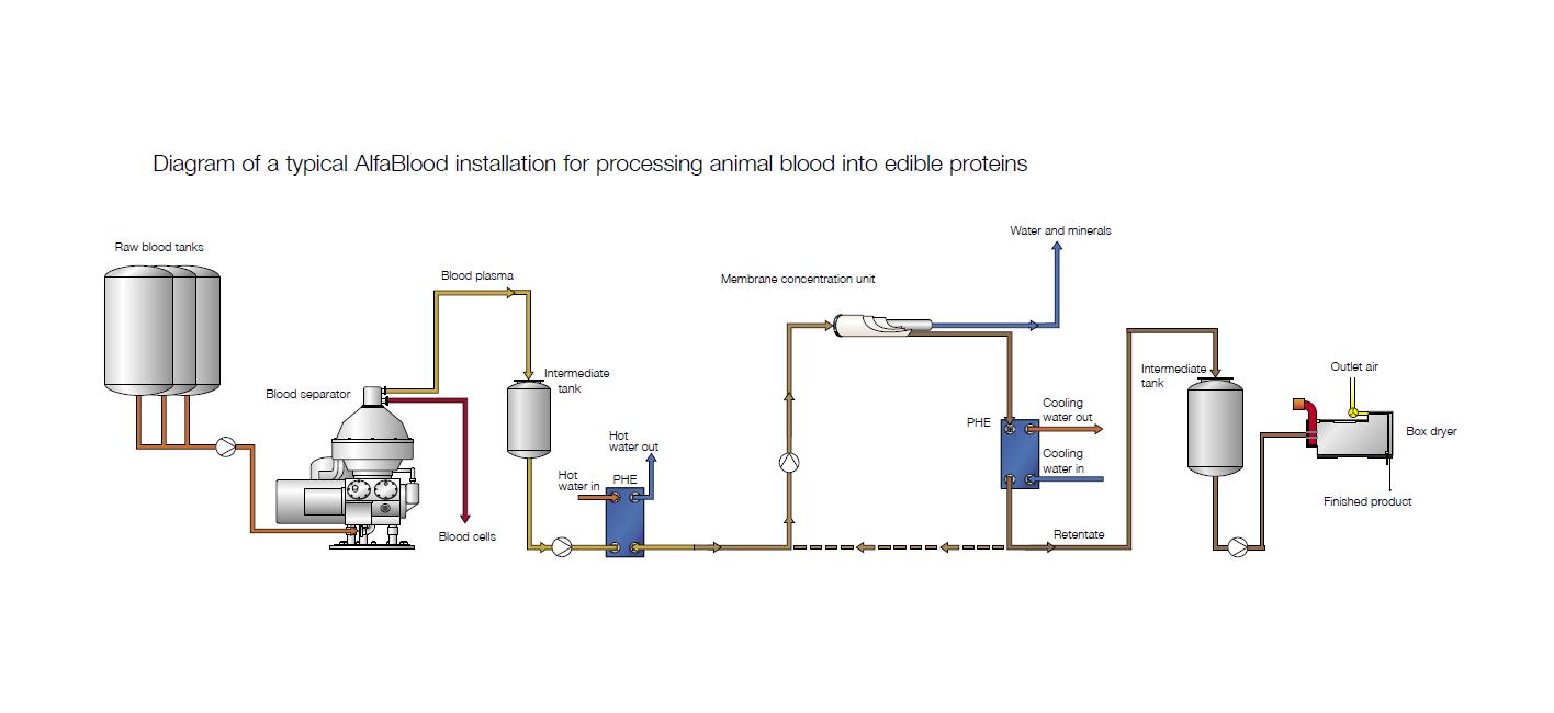 Process sheet AlfaBlood installation